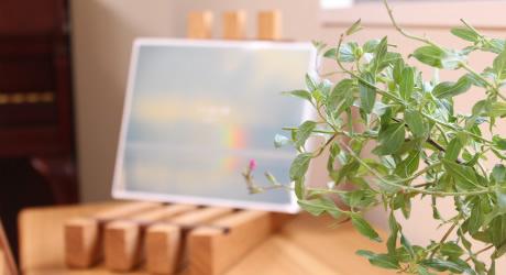 島根県松江市の心療内科・精神科一粒の麦